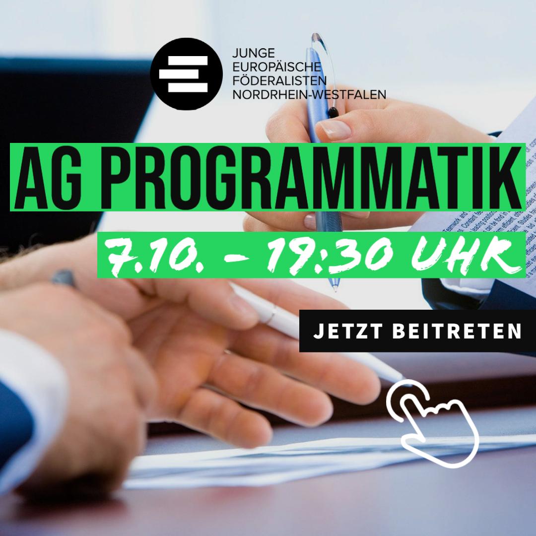 AG Programmatik Treffen